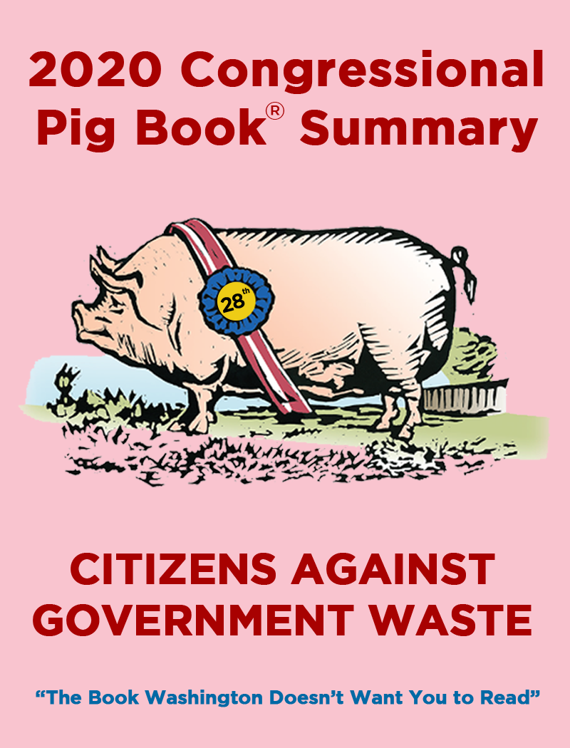 The 2020 Congressional Pig Book is here!